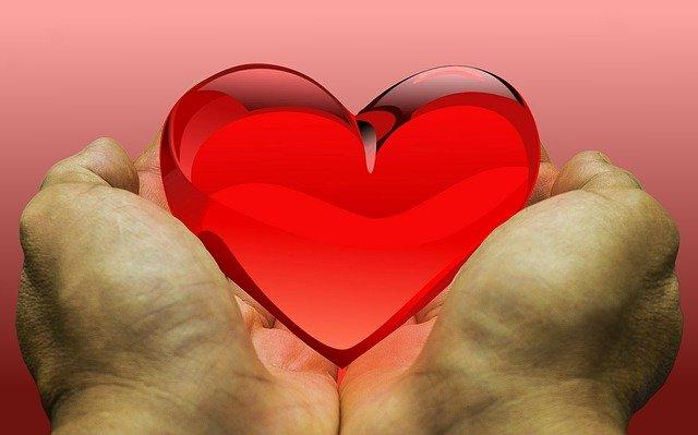 Heart held in hands image